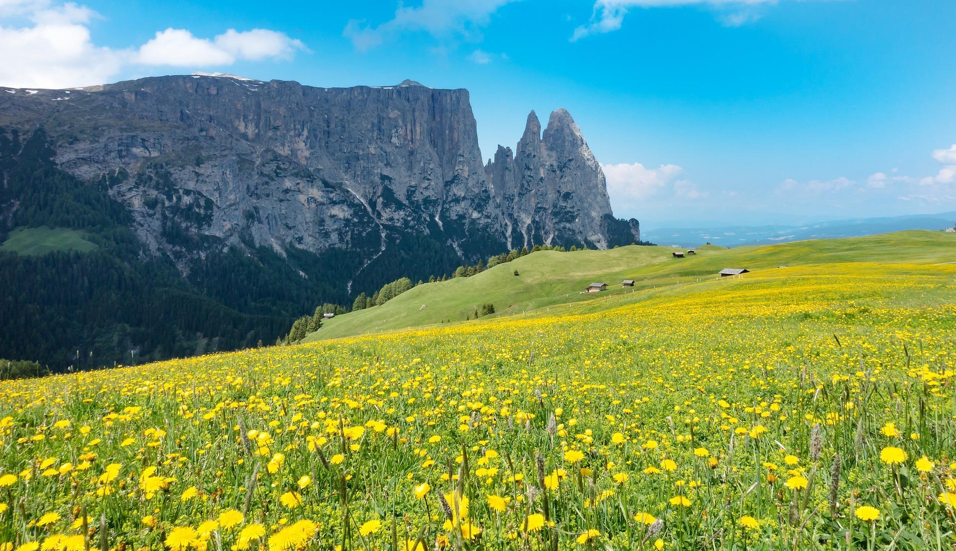 Alpe di Siusi Sciliar wikicommons